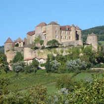 one of the many castles in the region